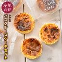 バスクチーズケーキ 便利な個包装 6個セット 大人気 濃厚ふわとろ食感 チーズケーキ 北海道産クリームチーズ67%使用 …