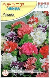 【種子】ペチュニア 八重咲混合福花園種苗のタネ
