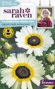 【輸入種子】Johnsons SeedsSarah Raven Brilliant for Bees & Butterflies Chrysanthemum Eastern Star サラ・レイブ…