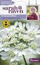 【輸入種子】Johnsons Seeds Sarah Raven Cut flowers & gorgeous gardens Orlaya grandiflora サラ・レイブン・カッ…