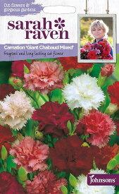 【輸入種子】Johnsons SeedsSarah Raven Cut flowers & gorgeous gardens Carnation Giant Chaubaud Mixedサラ・レイブン カットフラワーズ カーネーション ジャイアント・シャボー・ミックスジョンソンズシード