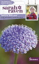 【輸入種子】Johnsons Seeds Sarah Raven Cut flowers & gorgeous gardens Didiscus Blue La...