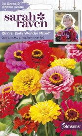 【輸入種子】Johnsons SeedsSarah Raven Cut flowers & gorgeous gardens Zinnia Early Wonder Mixedサラ・レイブン カットフラワーズ ジニア(百日草) アーリー・ワンダー・ミックスジョンソンズシード