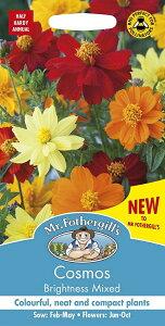 【輸入種子】Mr.Fothergill's Seeds Cosmos Brightness Mixed コスモス ブライトネス・ミックス ミスター・フォザーギルズシード