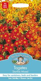 【輸入種子】Mr.Fothergill's SeedsTagetes Starfire Mixedタゲテス スターファイア・ミックスミスター・フォザーギルズシード