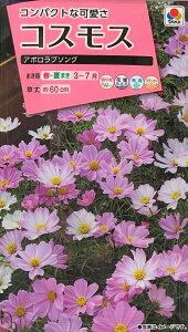 【種子】コスモス アポロラブソング タキイ種苗のタネ