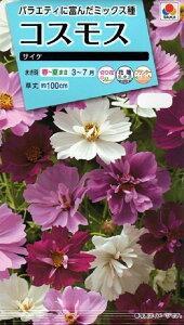【種子】コスモス サイケタキイ種苗のタネ