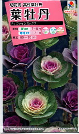 【種子】葉牡丹 F1 ファインミックス タキイ種苗のタネ