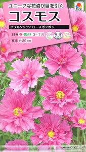 【種子】コスモス ダブルクリック ローズボンボン タキイ種苗のタネ