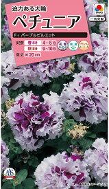 【種子】ペチュニア F1パープルピルエットタキイ種苗のタネ