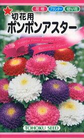【種子】切花用ポンポンアスタートーホクのタネ