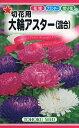 【種子】大輪アスター(混合)トーホクのタネ