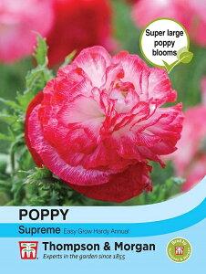 【輸入種子】Thompson & Morgan POPPY PAPAVER RHOEAS SUPREME ポピー シュプリーム トンプソン&モーガン