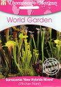 【輸入種子】Thompson&Morgan Sarracenia 'New Hybrids Mixedサラセニア・ニュー・ハイブリッズ・ミックス トンプソン…