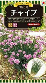【種子】ハーブ チャイブ タキイ種苗のタネ