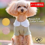 【メール便対象】ロジェフリルカラーTシャツRosenFrillCollarT-shirt【小型犬/ブラウス襟/ニット/フィット/レース/トップス/ドッグウェア/犬服/袖付き/ttry】