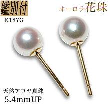 <5.1ミリ・ホワイト>スタッド小粒真珠ピアス<あこや・ベビー>素材⇒K18YGピアスバー