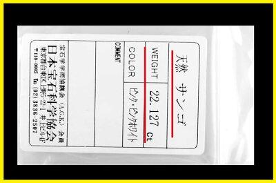 3月誕生石・【日本産】【鑑別付】天然桃珊瑚22.127ct