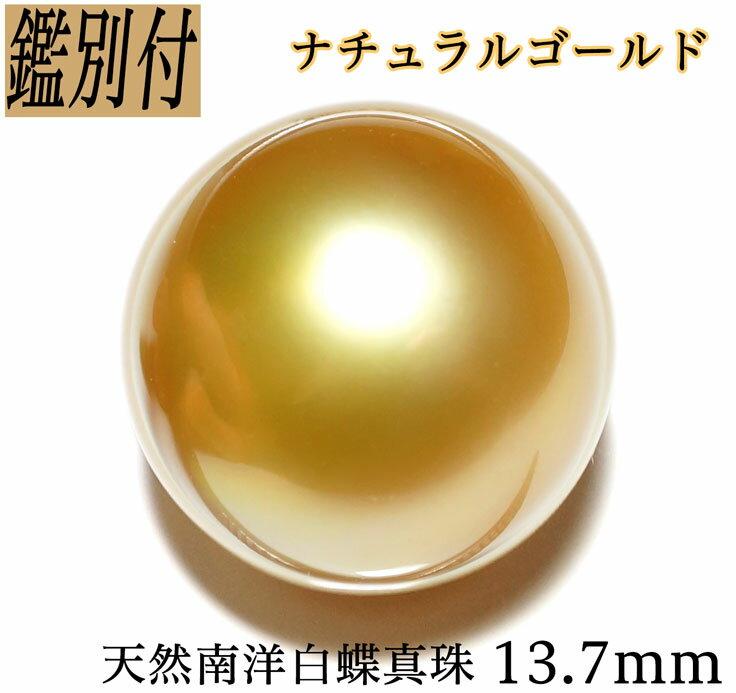 【鑑別付】天然南洋白蝶真珠 ナチュラルゴールド 13.7mm リング珠 ペンダント珠【加工承ります】