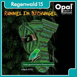 毛糸 Opal オパール 靴下用毛糸 Regenwald 15 4-ply 9775てあみ かぎ針 棒針 ニット 手編み 編み物 手芸 ハンドメイド 手作り