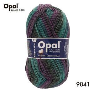 毛糸 Opal オパール Cotton Premium 2020(オパール・コットン・プレミアム2020)9841 4ply 4本撚り 靴下用毛糸 2020春コレクション てあみ かぎ針 棒針 ニット 手編み 編み物 手芸 ハンドメイド 手作り