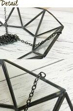 【GLASSHANGINGTRAY】ガラステラリウムハンキングトレイヴィンテージインテリア壁掛け吊るす北欧雑貨小物エアプランツチランジアティランジアインテリアグリーンミニ観葉観葉植物南国リビングディスプレイ