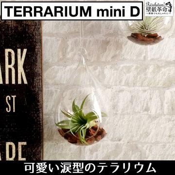 【terrarium miniD(涙型)】テラリウム ミニ 涙型 ハンキング ヴィンテージ インテリア 壁掛け 吊り下げ ガラス エアープランツ 北欧 雑貨 小物 エアプランツ チランジア ティランジア インテリアグリーン 観葉植物 容器 吊るす ディスプレイ ギフト