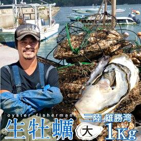 生牡蠣 殻付き 1kg 大 生食用宮城県産 漁師直送 格安生牡蠣お取り寄せお中元ギフト プレゼント