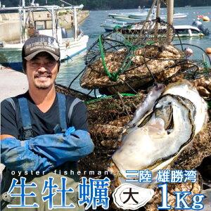 カキ 生牡蠣 殻付き 1kg 大 生食用宮城県産 漁師直送 格安カキ 生牡蠣お取り寄せお歳暮ギフト プレゼント