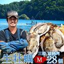 【送料無料】カキ 生牡蠣 殻付き 生食用 牡蠣 M 28個生ガキ 三陸宮城県産 雄勝湾(おがつ湾)カキ漁師直送 お取り寄せ …