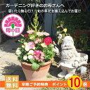 【母の日早期特典ポイント10倍】送料無料!旬の草花をイタリア製テラコッタに寄せ植えしてお届け!