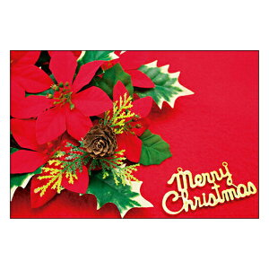 クリスマスカード サンタクロース サンタ 【DMC-063】10枚パック メッセージカード ハガキサイズ デザインメッセージカードにクリスマスカード登場!【クリスマスデザインの絵柄面はプリン