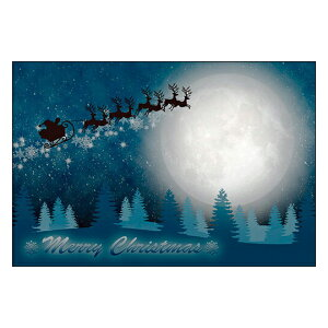 クリスマスカード サンタクロース サンタ 【DMC-065】10枚パック メッセージカード ハガキサイズ デザインメッセージカードにクリスマスカード登場!【クリスマスデザインの絵柄面はプリン
