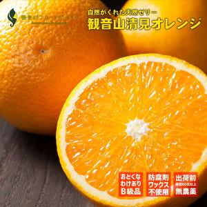 観音山清見オレンジ おてんば娘 B級品 3kg 和歌山 観音山フルーツガーデン 予約商品