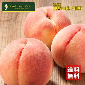 紀ノ川の熟れ熟れ桃 A級 2kg 観音山フルーツガーデン 送料無料 予約商品