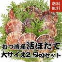 青森県むつ湾産活ほたて 大サイズ 2.5kg (10枚~12枚) ランキングお取り寄せ