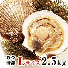 青森県むつ湾産活ほたて Lサイズ 2.5kg (10枚~12枚)「活ほたて、ホタテ、帆立、ほたて」