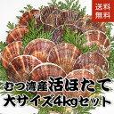 青森県むつ湾産活ほたて 大サイズ 4kg (16枚~20枚) ランキングお取り寄せ
