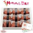 【公式】 母の日 プレゼント │ ゆふいん創作菓子 ぷりんどら 9個入 《 冷凍発送 》 │ 大分 母の日 早割 ギフト スイ…