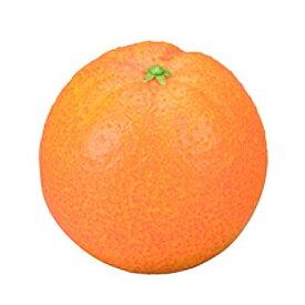 お供え果実 オレンジ イミテーションフルーツ フェイクフルーツ 果物 御供 供物 仏具 かわいい 贈答 お供 ペット 犬 猫