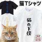 【猫Tシャツ】