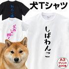 【犬Tシャツ】