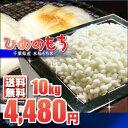 もち米 10kg 送料無料 白米 (5kg×2袋) 千葉県産 ひめのもち 28年産