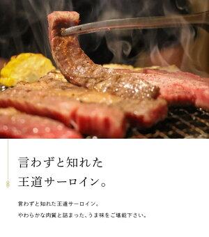 【がんばろう!静岡対象商品】掛川牛「和牛」サーロイン500g(250g×2枚)