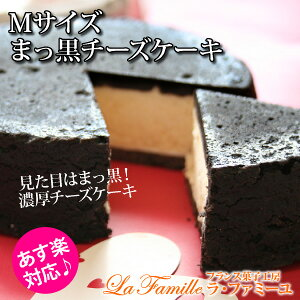 まっ黒チーズケーキ Mサイズ(あす楽対応:正午12:0...