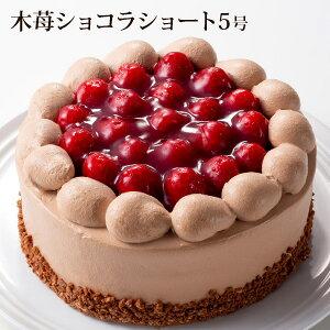 木苺ショコラショート