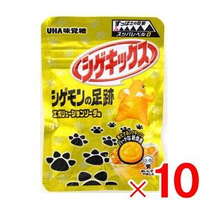 味覚糖 シゲキックス シゲモンの足跡エボリューションソーダ 20g ×10袋 セット販売
