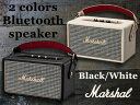 Marshall_speak2_coloer