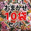 チューリップ袋詰め おまかせ10袋セット【超特価】【福箱】【福袋】【球根】