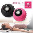 振動ボール ミニ ピンク ブラック マッサージボール 充電式 コードレス 筋肉 ほぐしたい 背中 腕 腰 お尻 ふくらはぎ …